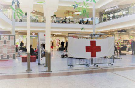 IMG_7525-e1550496633503-445x290 Deutsches Rotes Kreuz